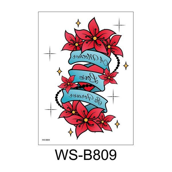 WS-B809