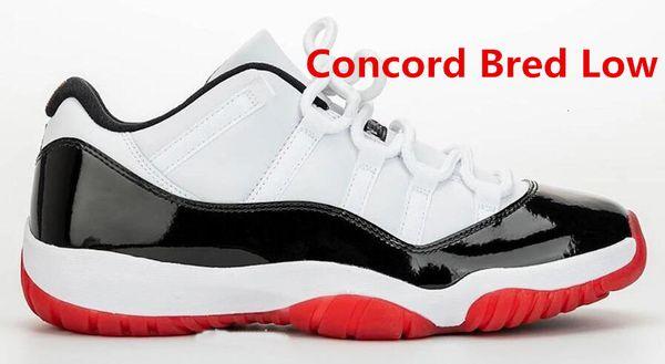 Concord Bred bas