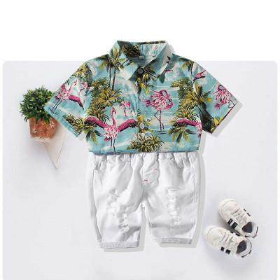2019 Beachwear Boys Short Sleeve Beach Wind Casual Cotton Shirt New Summer Boys Set Short Sleeve Coconut Shirt Solidpant infant boy clothing