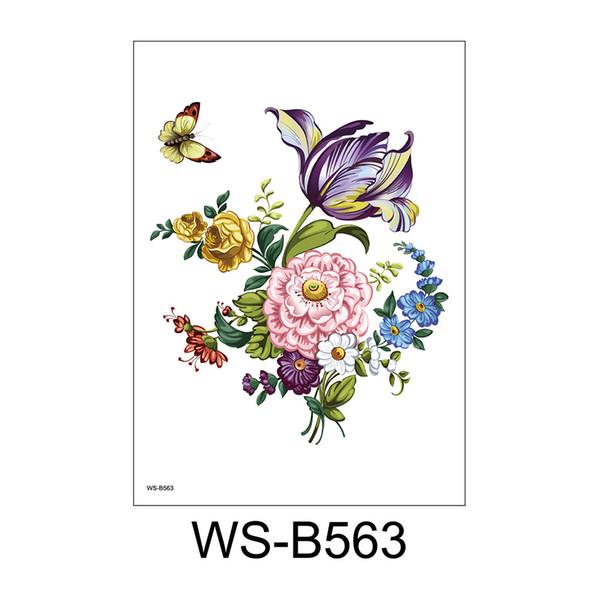 WS-B563