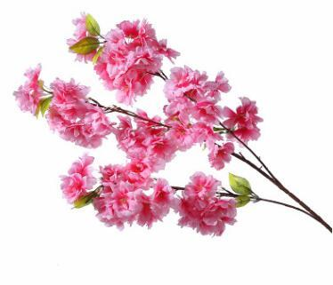 küpe çiçeği