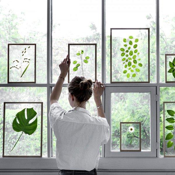 Solide cadre photo en bois tableau photo cadre photo mur Photos de la vie 6 pouces spécimen de plante 7 pouces