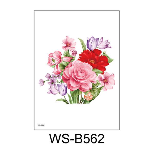 WS-B562