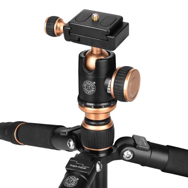 Camera QINGZHUANGSHIDAI Q166 reflex Mini Fotografia piccolo treppiede fotocamera multifunzionale treppiedi portatile