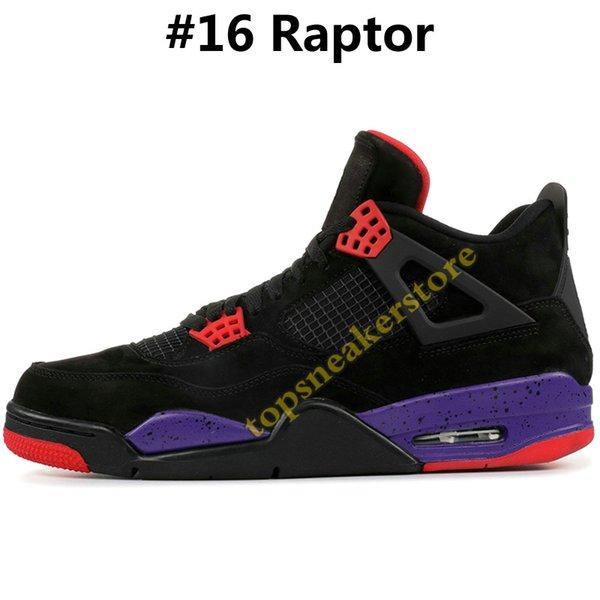 #16 Raptor