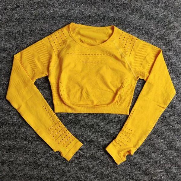 C9 (Yellow encabeça)