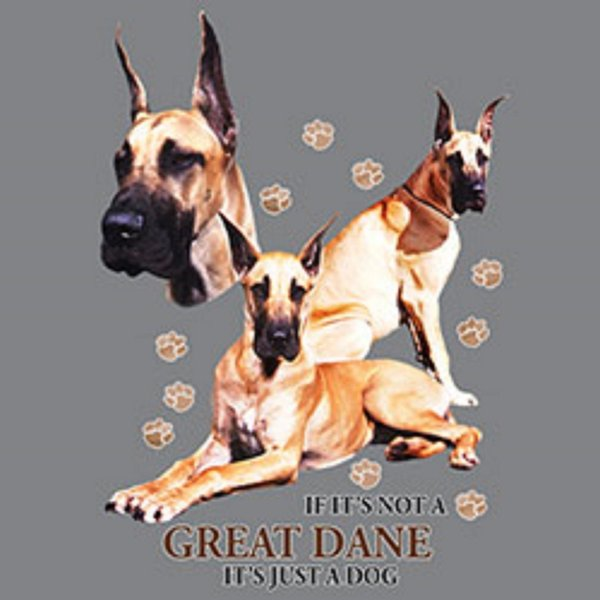 Great Dane Funny Pick Your Size T Shirt Youth Small-6 X Large