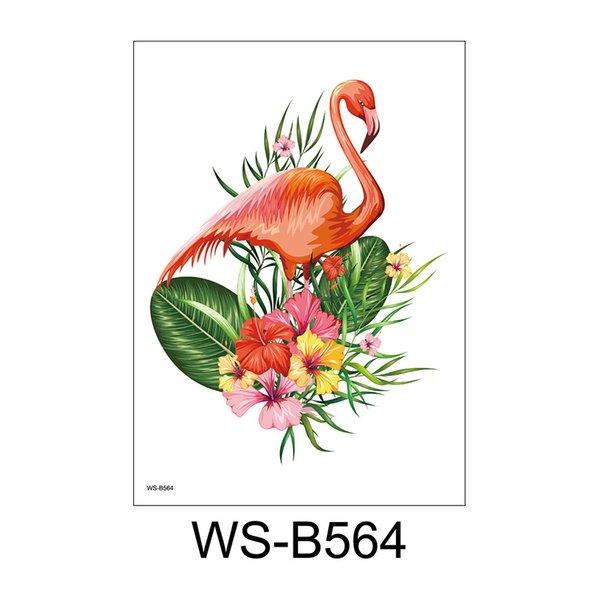 WS-B564