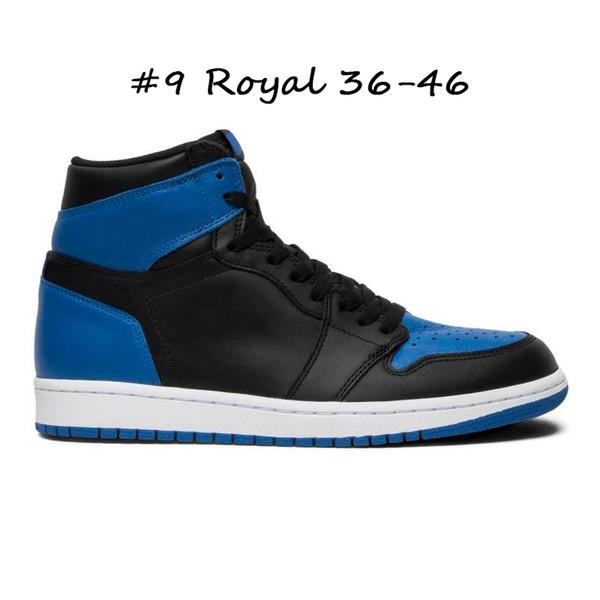 #9 Royal 36-46