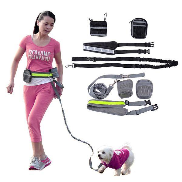 Running reflective dog leash New Elastic Belt lead sports jogging walking pet collar rope hand free waist dog leash set