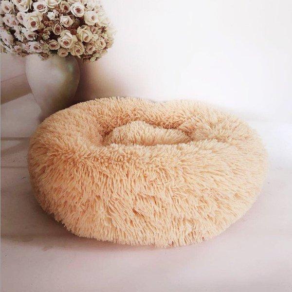 Абрикос-наружный диаметр 70см