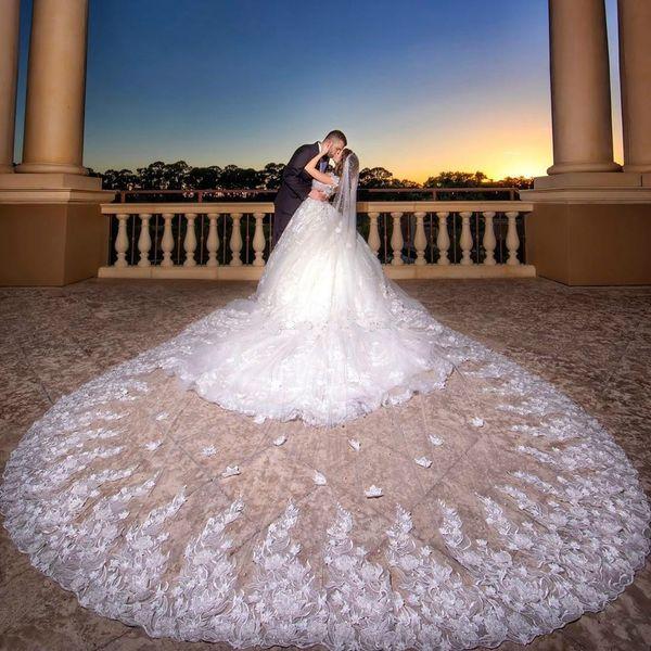 Velos de novia con cuentas de lujo 4M Largo de la catedral Longitud de una capa Borde con apliques Velo de novia de tul para mujeres Accesorios para el cabello
