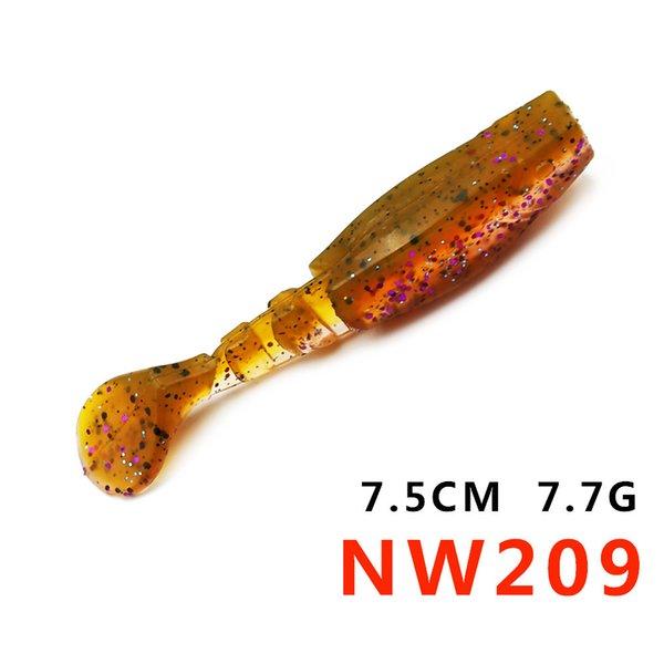 nw209