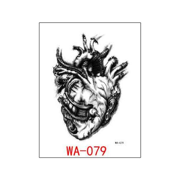 WA-079