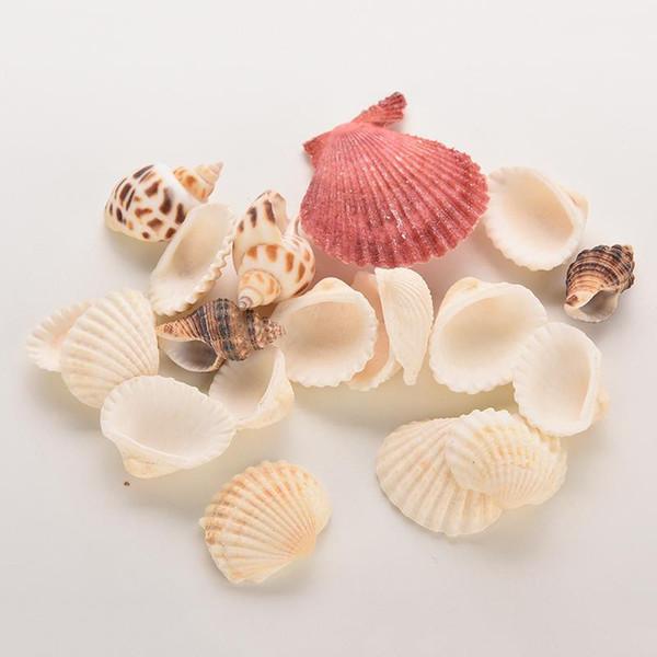 Komik Karışık Deniz kabukları Shell Craft Akvaryum Deniz Dekor Süsler doğal Mini deniz kabuğu akdeniz Of 1 * çanta Lot