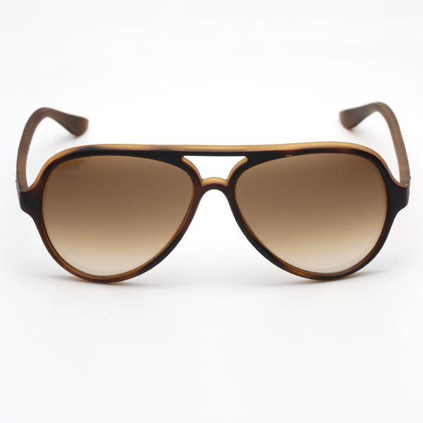 tortoise-brown gradient