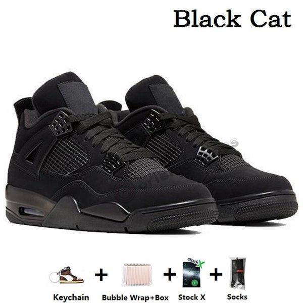 4s - chat noir