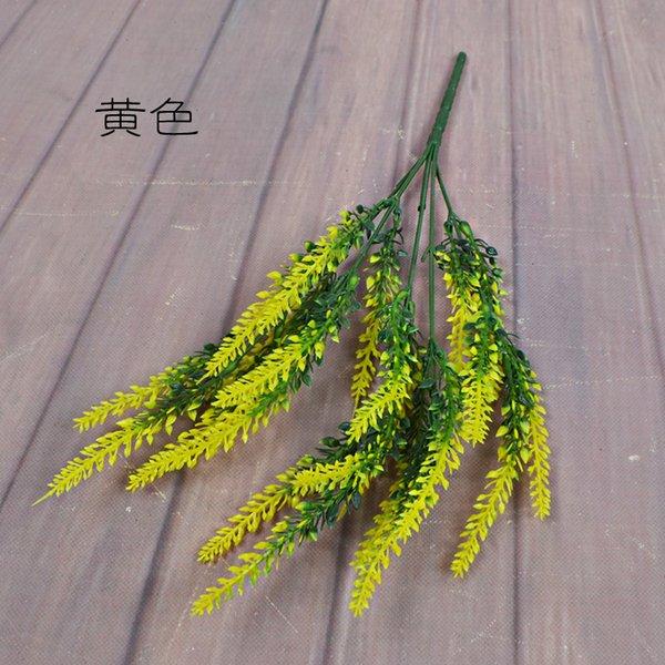 lavande jaune