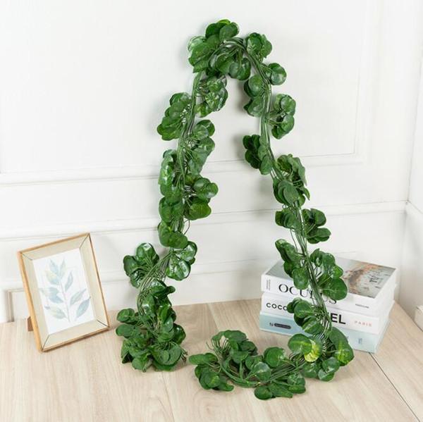 foglia piccola begonia