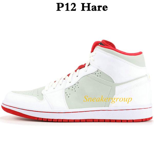 P12 Заяц