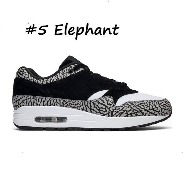 5 Elefanten