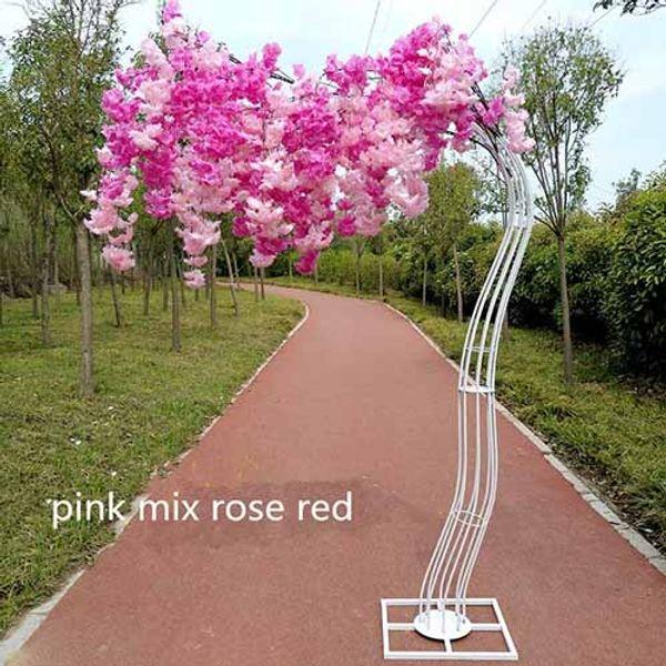 rosa mix rosa rossa