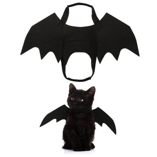 Cat Cosplay Abbigliamento costume nero ala del blocco Halloween Party per Pet Supplies 1Pc