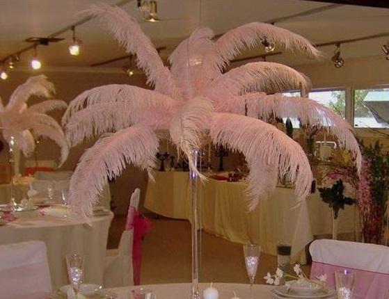 100 adet / grup 14-16 inç (35-40 cm) Pembe ve beyaz devekuşu tüyler plumes Düğün centerpieces tüy dekor ev masa dekor z134C