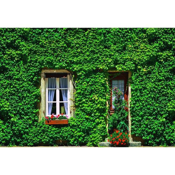 7x5ft Green Grass Baumhaus Holz Tür Fenster Benutzerdefinierte Fotostudio Hintergrund Vinyl Banner 220 cm x 150 cm