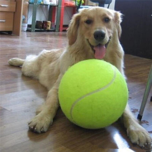 24CM big Tennis Ball For Pet Chew Toy Big Inflatable Tennis Ball Signature Mega Jumbo Pet Toy Ball Supplies Outdoor Cricket c430