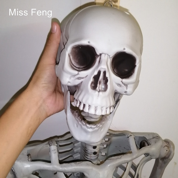 J247 / Novelty 165 cm Full Life Size Skeleton Halloween Party Prop Terrible Model Toy