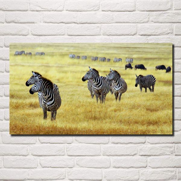 marching zebra savanna wildlife animals nature wild living room decor home wall art decor wood frame fabric posters KG990