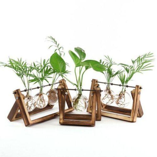 Legno Vetro da tavolo della pianta dei bonsai vasi di fiore di vetro con vassoio di legno Home Decor Strumento