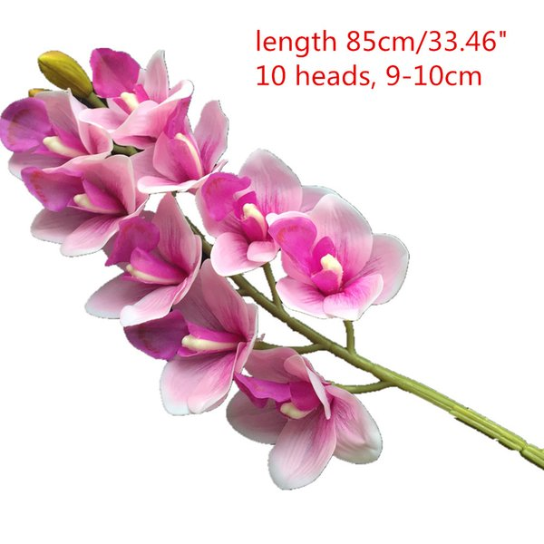 85cm rosa cymbidium