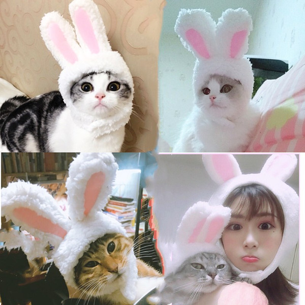 The Cat Hair Ornaments Cute Rabbit Drag Hat Cat Headwear For People And Pet Cosplay Accessories Cap Costume Warm Rabbit Hat
