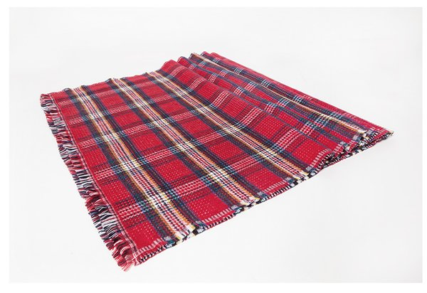 new double-sided checked scarf imprints cashmere female winter thermal scarf female foreign trade shawl manufacturers direct sales FRA0035