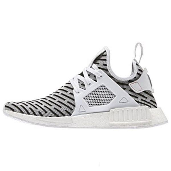 Zebra_