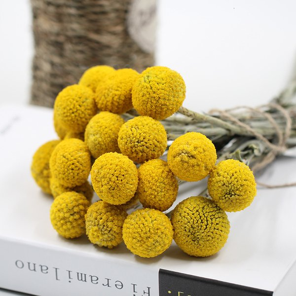 3cm Large 20pcs Natural Dried Flower Craspedia Billy Balls Wedding Bouquet Flower Branch Preserved Flowers Home Decoration SH190920