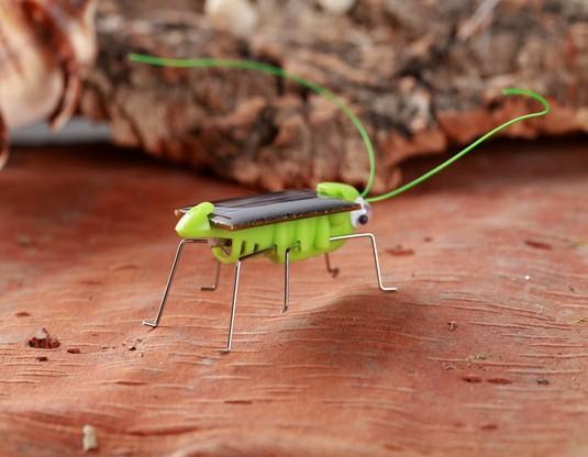 New Solar Grasshopper Simulação inseto criativas ciência e educação truque Iluminismo quebra-cabeça crianças Vendas Fábrica de Brinquedos