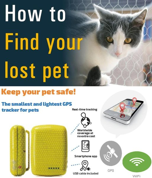 wifi gps mini tracker online sim card smart jewelry tracking device support APP phone pet gps tracker collar for cattle tracking