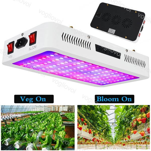 Led Grow Light Double Chip Switch 1000W 1200W 1500W 2000W VEG BLOOM For Covered Grow Tent Green Houses Plant Lamp Hydroponic Systems DHL