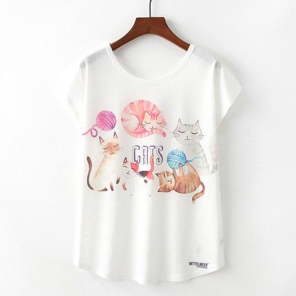 5 Gatos