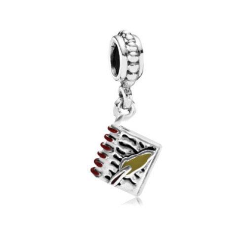 Fit Pandora Charm Bracelet Européen En Argent Charmes Journal Livre Émail Dangle Grand Trou Perles DIY Chaîne De Serpent Pour Les Femmes Bracelet Collier Bijoux