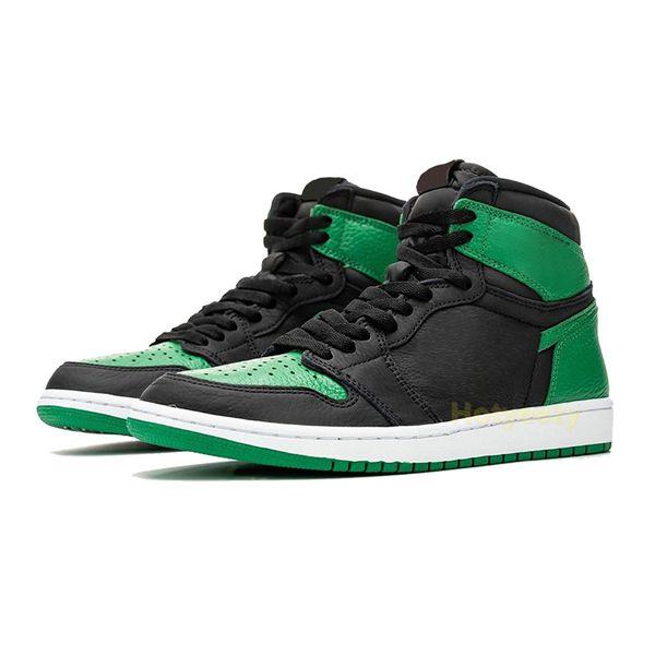 сосна зеленая черная