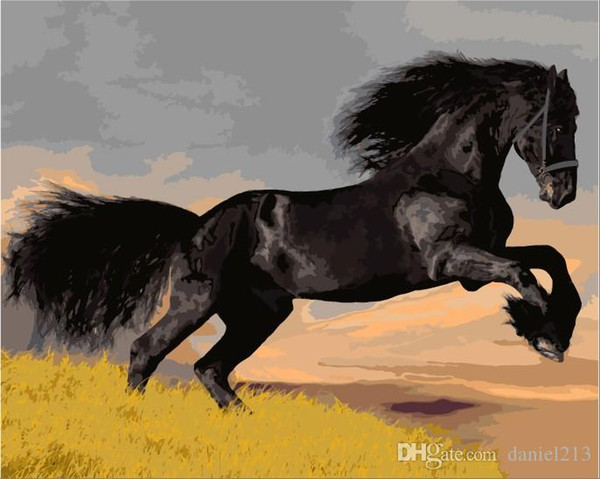 Jumping Black Horse 16x20 inches DIY Paint On Canvas drawing By Numbers Kits Art Acrylic Oil Painting Frame For Adult Teen