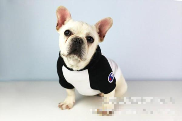 Mascota suéter Demanda de primavera y verano ropa linda Sombrero Campeón de peluche pequeño y mediano perro ventas directas de fábrica
