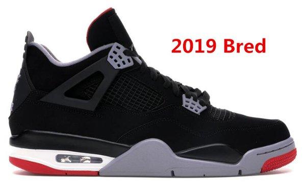2019 Bred