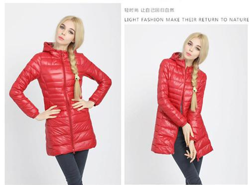 W00785 red