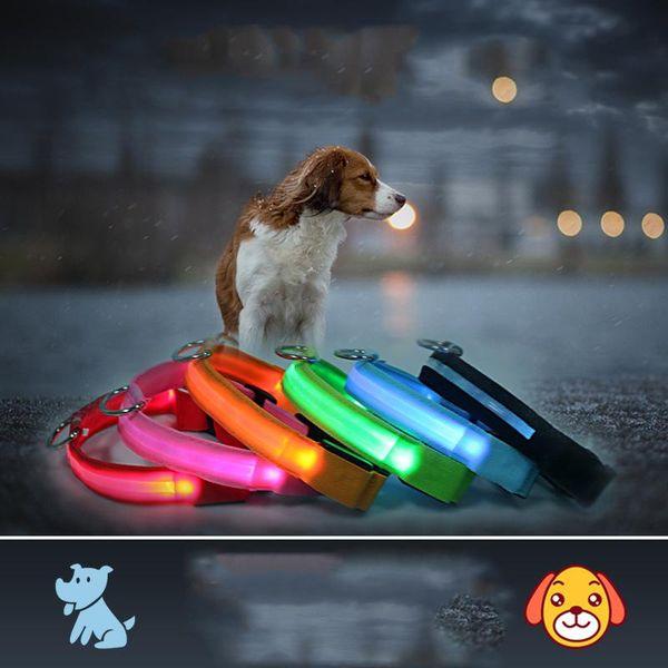LED Correa de perro LED Perro de mascota Collar de colores Luz intermitente Collar luminoso Suministros de mascotas Resplandor Etiqueta de seguridad Noche reflectante DH0177