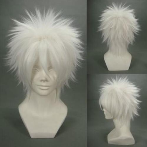 Ruler White Hair WIG Short Bangs Heat Resistant Fashion Cosplay Men Costume L64#